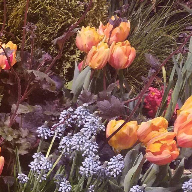 Love the inspiration nwflowerandgardenshow springwillbeheresoon